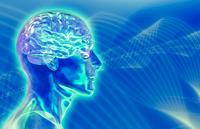 Как индивидуальные способности влияют на процесс обучения