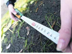 В каких случаях проводится экспертиза раздела земельного участка