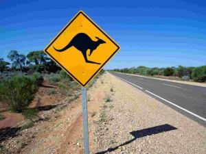 Американцы в стране кенгуру