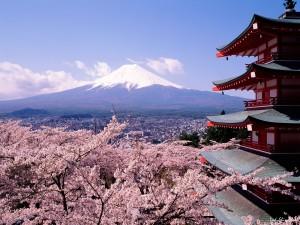 Сложности японского языка. Часть 2